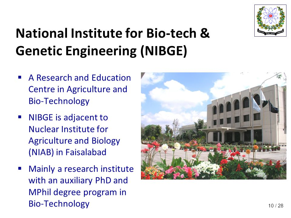 / 28 National Institute for Bio-tech & Genetic Engineering (NIBGE)  A Research and Education Centre in Agriculture and Bio-Technology  NIBGE is adjacent to Nuclear Institute for Agriculture and Biology (NIAB) in Faisalabad  Mainly a research institute with an auxiliary PhD and MPhil degree program in Bio-Technology 10