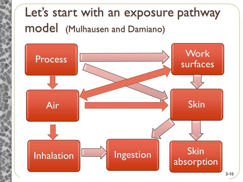 Let's start with an exposure pathway model (Mulhausen and Damiano) 3-10