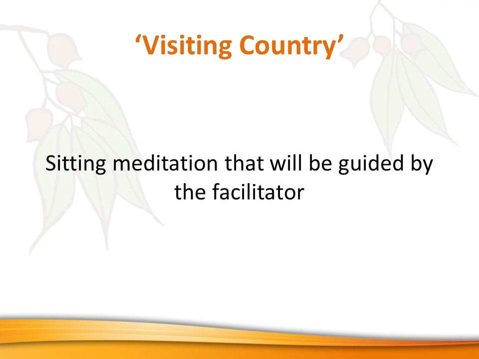 'Visiting Country' Sitting meditation that will be guided by the facilitator