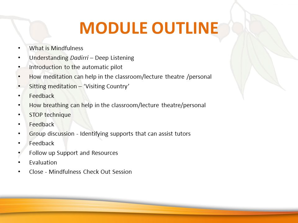MODULE OUTLINE What is Mindfulness Understanding Dadirri – Deep Listening Introduction to the automatic pilot How meditation can help in the classroom/lecture theatre /personal Sitting meditation – 'Visiting Country' Feedback How breathing can help in the classroom/lecture theatre/personal STOP technique Feedback Group discussion - Identifying supports that can assist tutors Feedback Follow up Support and Resources Evaluation Close - Mindfulness Check Out Session