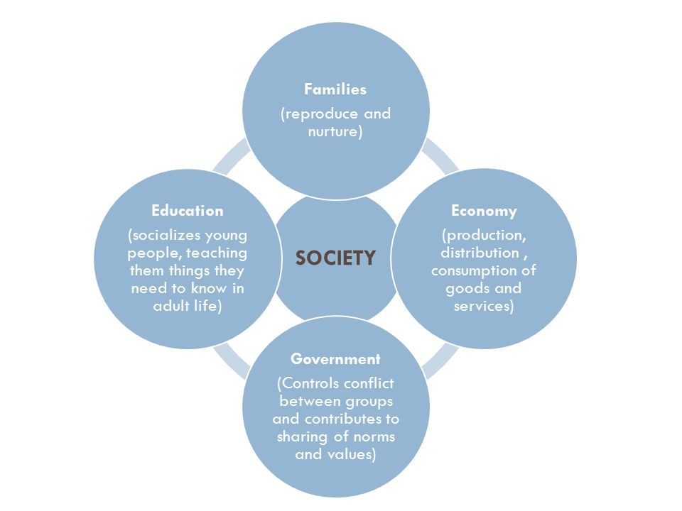 SOCIETY Families (reproduce and nurture) Economy (production, distribution, consumption of goods and services) Government (Controls conflict between groups and contributes to sharing of norms and values) Education (socializes young people, teaching them things they need to know in adult life)
