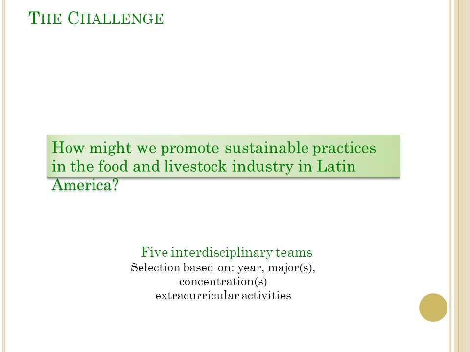 T HE C HALLENGE How might we promote sustainable practices in the food and livestock industry in Latin America? Five interdisciplinary teams Selection