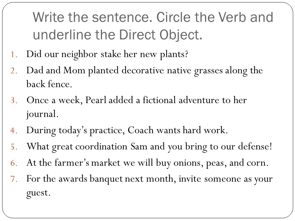 Write the sentence. Circle the Verb and underline the Direct Object.