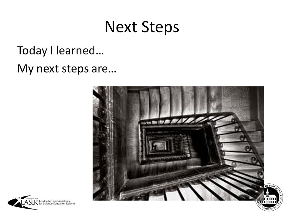 Next Steps Today I learned… My next steps are…