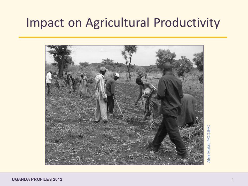 Impact on Agricultural Productivity UGANDA PROFILES 2012 3 Alex Mokori/RCQHC