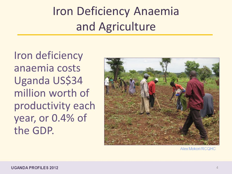 Iron Deficiency Anaemia and Agriculture Iron deficiency anaemia costs Uganda US$34 million worth of productivity each year, or 0.4% of the GDP.
