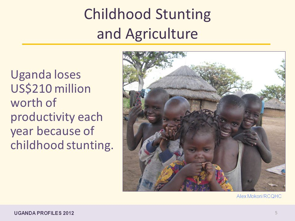 Childhood Stunting and Agriculture Uganda loses US$210 million worth of productivity each year because of childhood stunting. Alex Mokori/RCQHC UGANDA