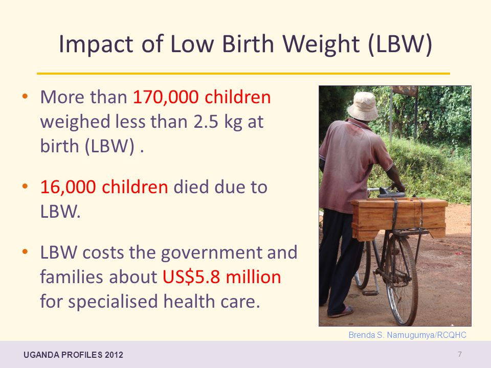 Impact of Low Birth Weight (LBW) More than 170,000 children weighed less than 2.5 kg at birth (LBW).