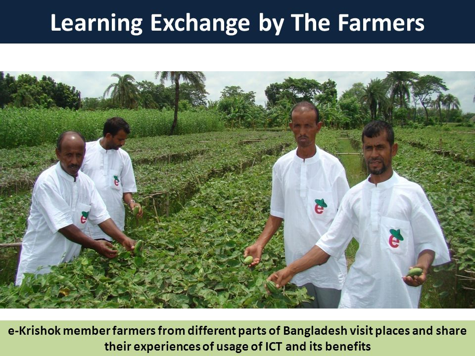 Learning Exchange by The Farmers e-Krishok member farmers from different parts of Bangladesh visit places and share their experiences of usage of ICT and its benefits