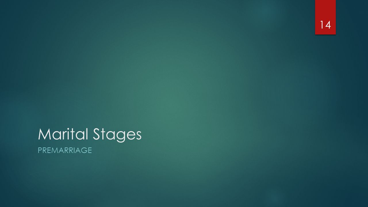 Marital Stages PREMARRIAGE 14