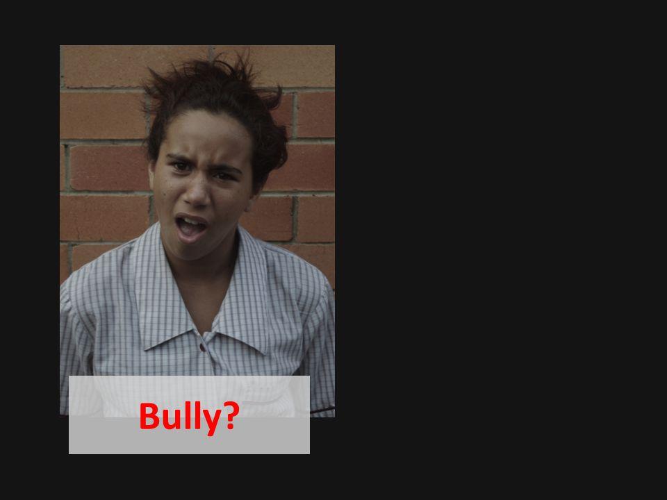 Bully?