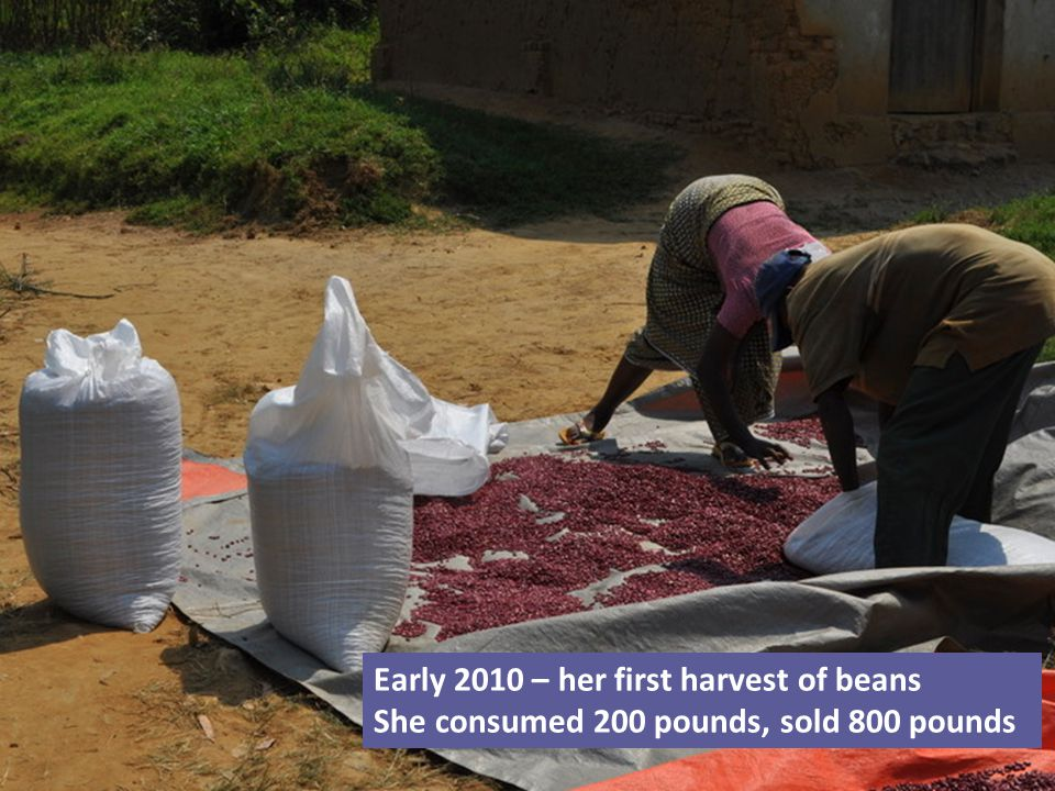 Early 2010 – her first harvest of beans She consumed 200 pounds, sold 800 pounds