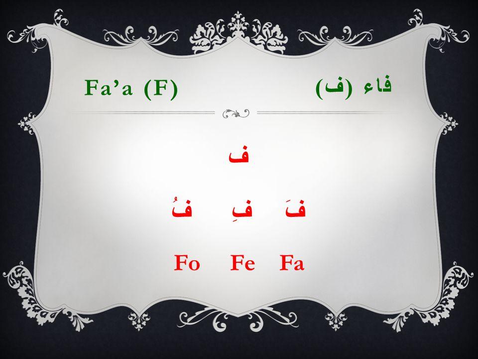 Fa'a (F) فاء ( ف ) ف فَ فِ فُ Fo Fe Fa