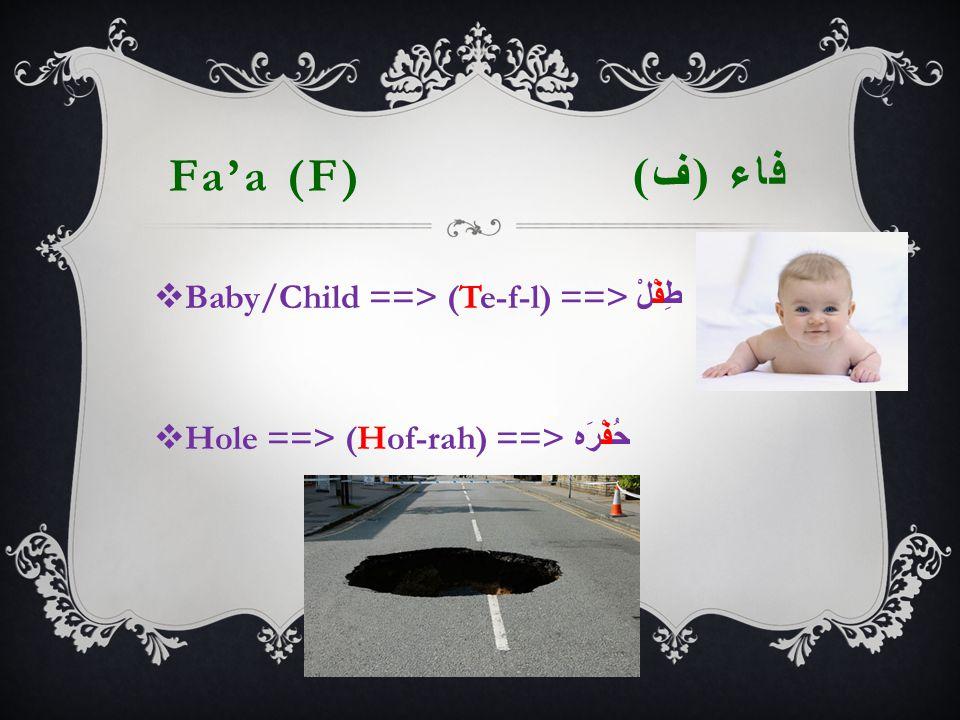 Fa'a (F) فاء ( ف )  Baby/Child ==> (Te-f-l) ==> طِفْلْ  Hole ==> (Hof-rah) ==> حُفْرَه