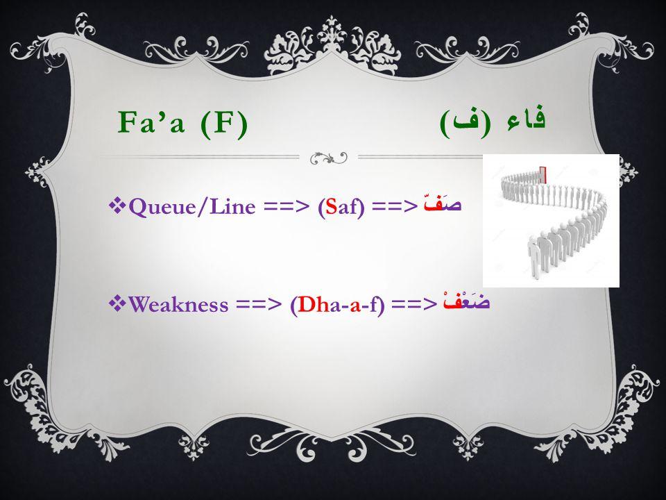 Fa'a (F) فاء ( ف )  Queue/Line ==> (Saf) ==> صَفّ  Weakness ==> (Dha-a-f) ==> ضَعْفْ