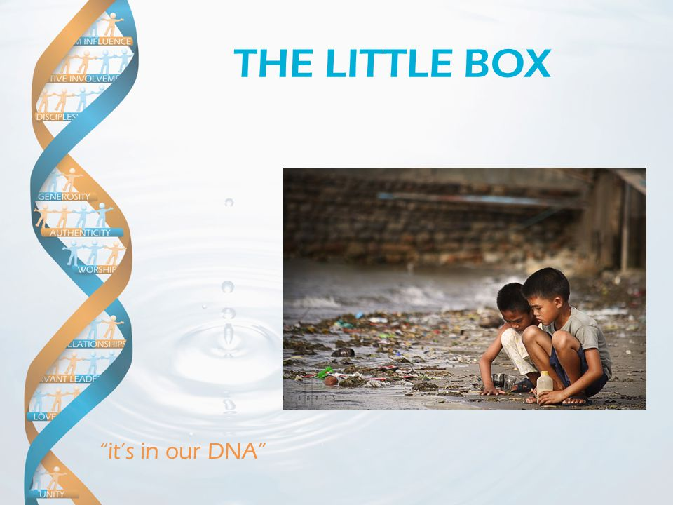 """it's in our DNA"" THE LITTLE BOX"
