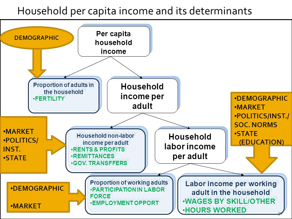 Household per capita income and its determinants Per capita household income Proportion of adults in the household FERTILITY Proportion of adults in the household FERTILITY Household income per adult Household non-labor income per adult RENTS & PROFITS REMITTANCES GOV.