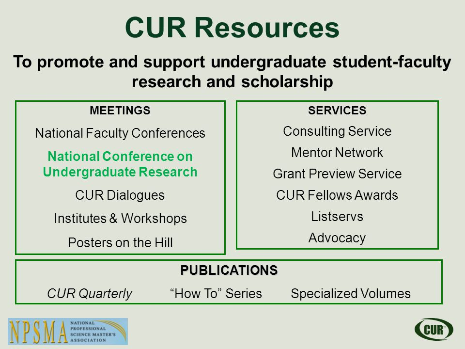 Key Questions What is the Council on Undergraduate Research.