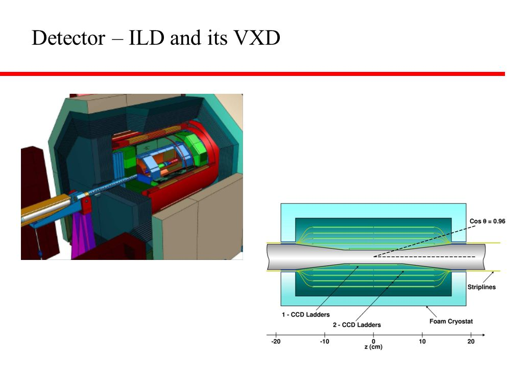 Detector – ILD and its VXD