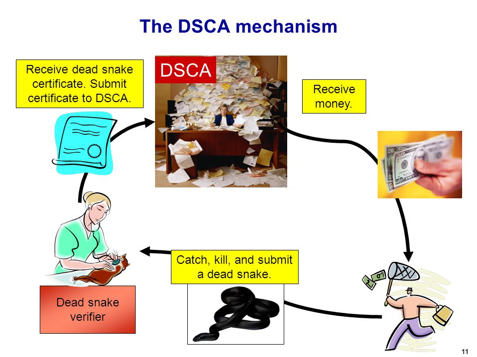 11 The DSCA mechanism Catch, kill, and submit a dead snake. DSCA Receive money. Dead snake verifier Receive dead snake certificate. Submit certificate