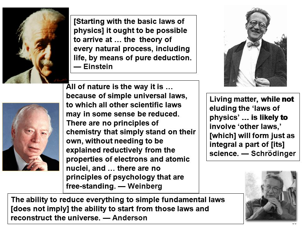 30 Living matter, while not eluding the 'laws of physics' … is likely to involve 'other laws,' [which] will form just as integral a part of [its] science.