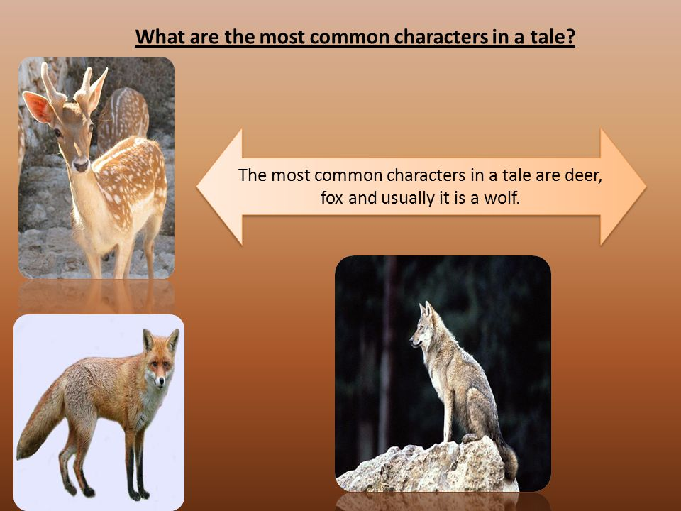 What are the most common characters in a tale? The most common characters in a tale are deer, fox and usually it is a wolf.