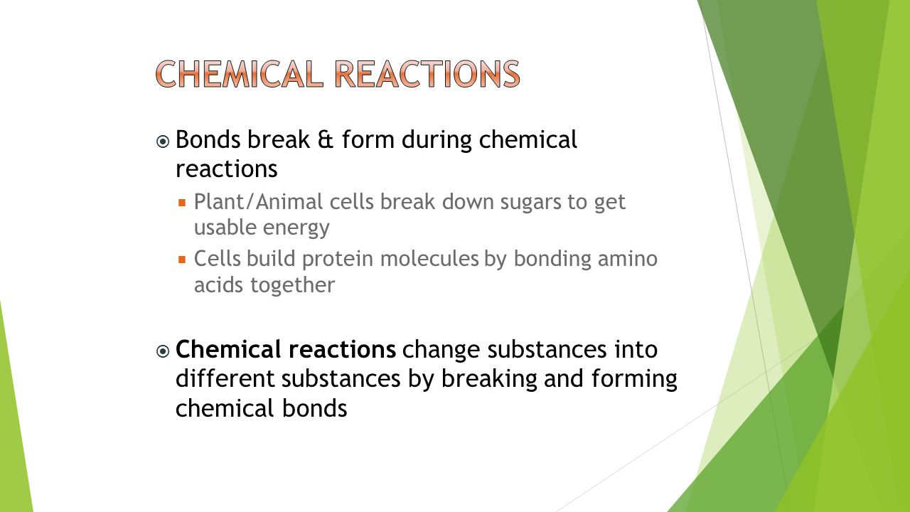  Bonds break & form during chemical reactions  Plant/Animal cells break down sugars to get usable energy  Cells build protein molecules by bonding amino acids together  Chemical reactions change substances into different substances by breaking and forming chemical bonds