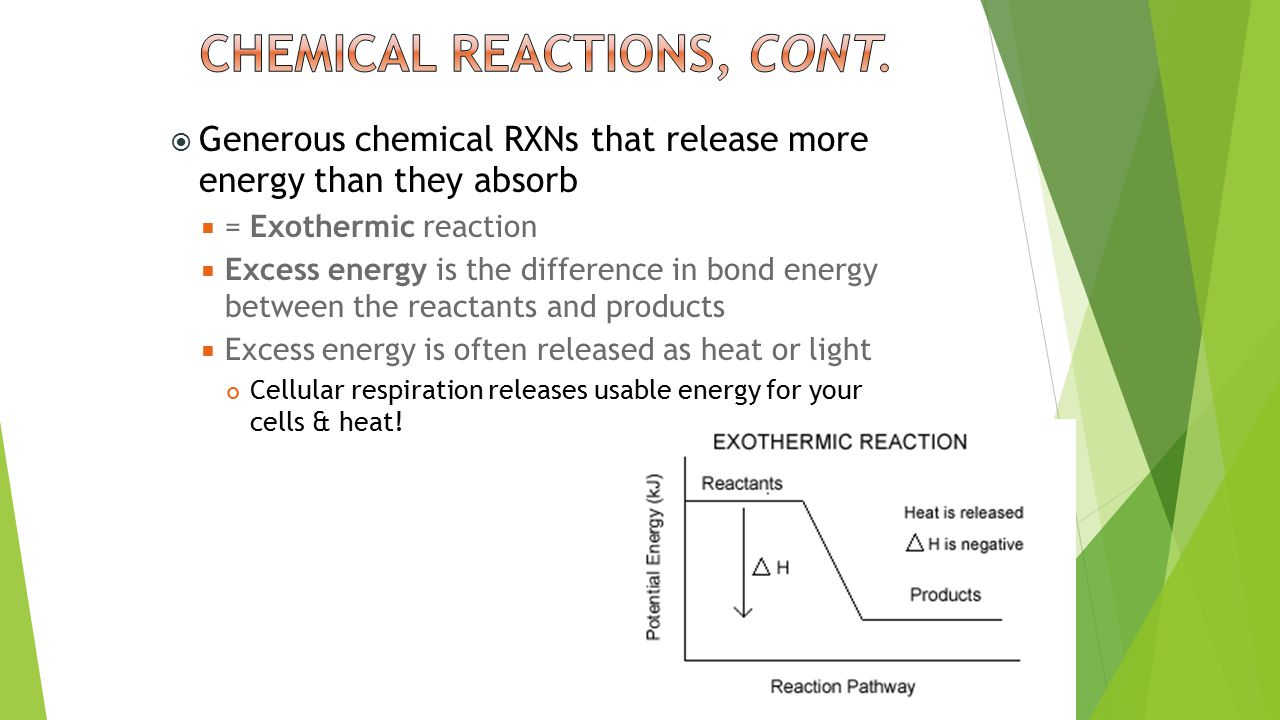  Generous chemical RXNs that release more energy than they absorb  = Exothermic reaction  Excess energy is the difference in bond energy between the reactants and products  Excess energy is often released as heat or light Cellular respiration releases usable energy for your cells & heat!
