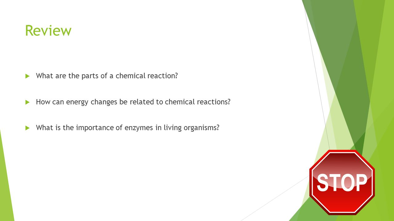 Review  What are the parts of a chemical reaction?  How can energy changes be related to chemical reactions?  What is the importance of enzymes in