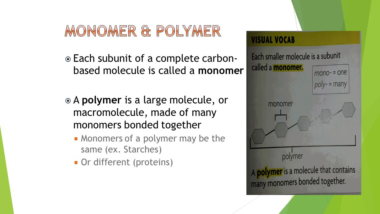 Each subunit of a complete carbon- based molecule is called a monomer  A polymer is a large molecule, or macromolecule, made of many monomers bonde