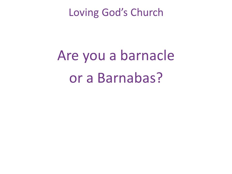 Are you a barnacle or a Barnabas Loving God's Church