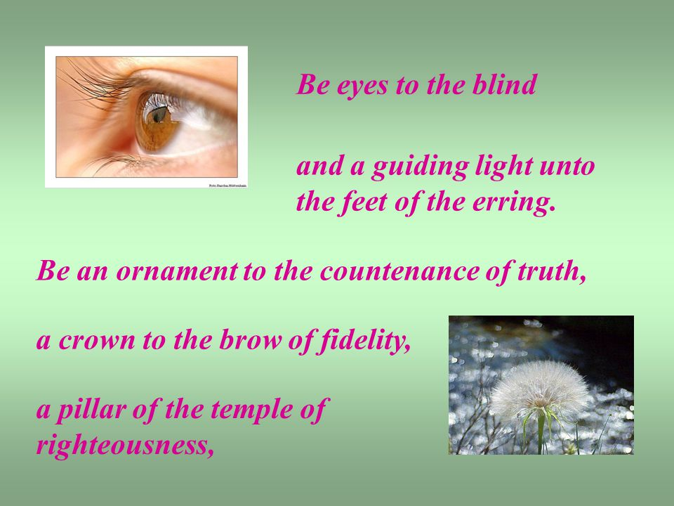 Be eyes to the blind and a guiding light unto the feet of the erring.