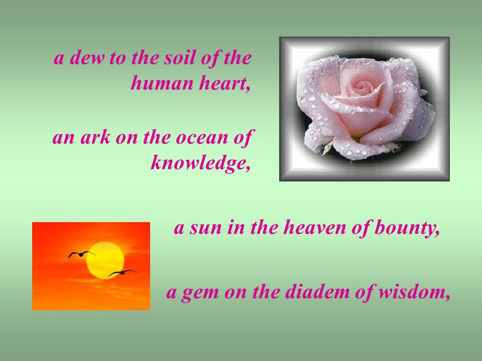 a dew to the soil of the human heart, an ark on the ocean of knowledge, a sun in the heaven of bounty, a gem on the diadem of wisdom,