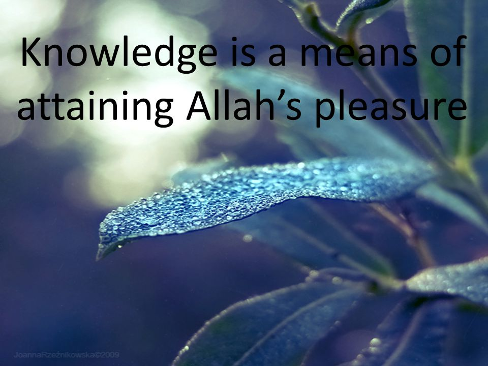 Knowledge is a means of attaining Allah's pleasure
