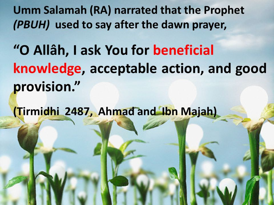 Umm Salamah (RA) narrated that the Prophet (PBUH) used to say after the dawn prayer, O Allâh, I ask You for beneficial knowledge, acceptable action, and good provision. (Tirmidhi 2487, Ahmad and Ibn Majah)