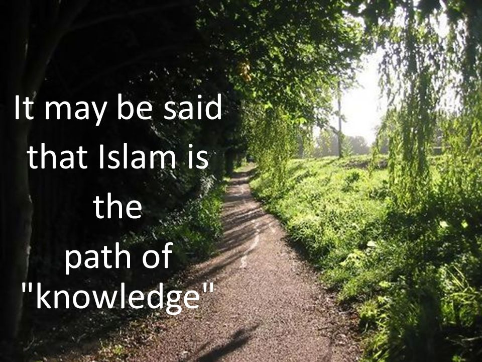 It may be said that Islam is the path of knowledge
