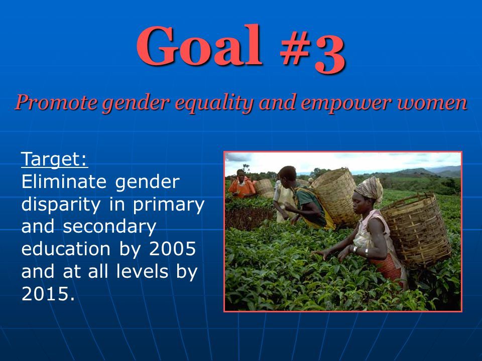 Goal #3 Promote gender equality and empower women Target: Eliminate gender disparity in primary and secondary education by 2005 and at all levels by 2015.
