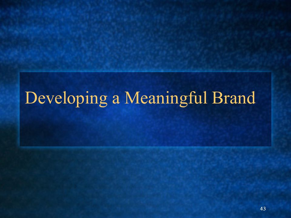 43 Developing a Meaningful Brand
