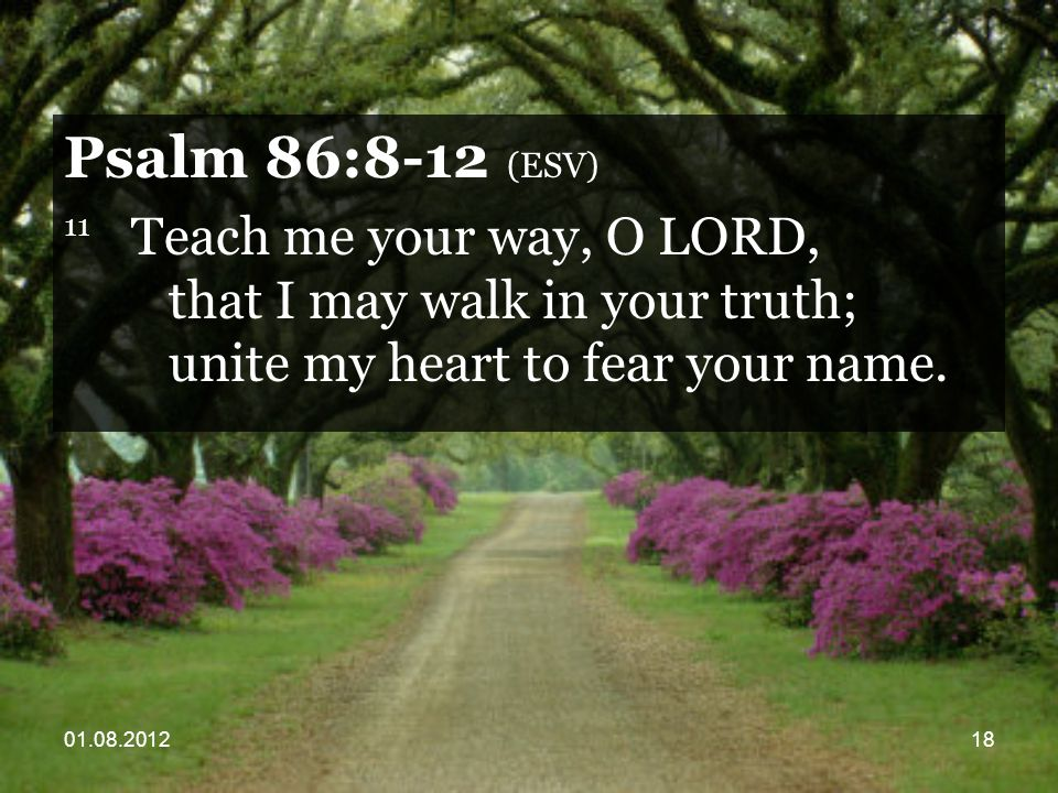 01.08.201218 Psalm 86:8-12 (ESV) 11 Teach me your way, O LORD, that I may walk in your truth; unite my heart to fear your name.