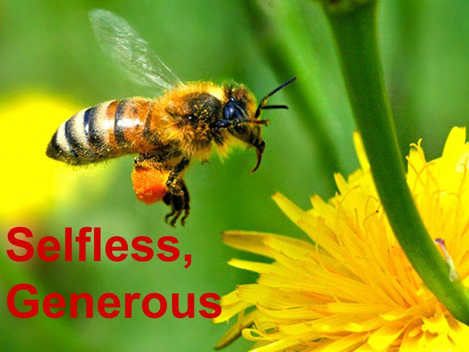Selfless, Generous