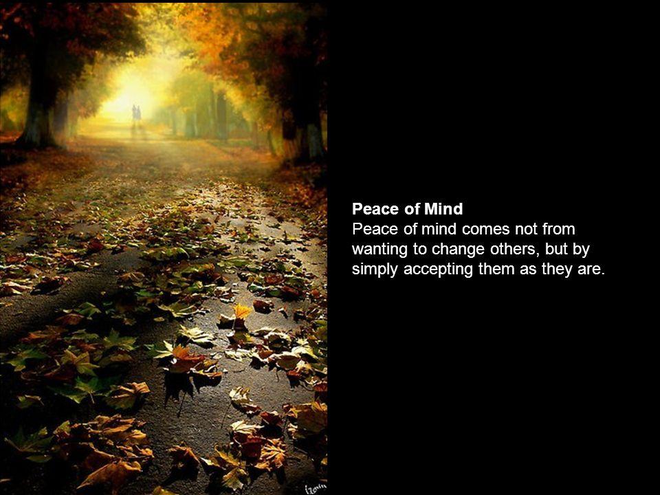 Calmness & Silence Calmness increases efficiency. Silence increases effectiveness.