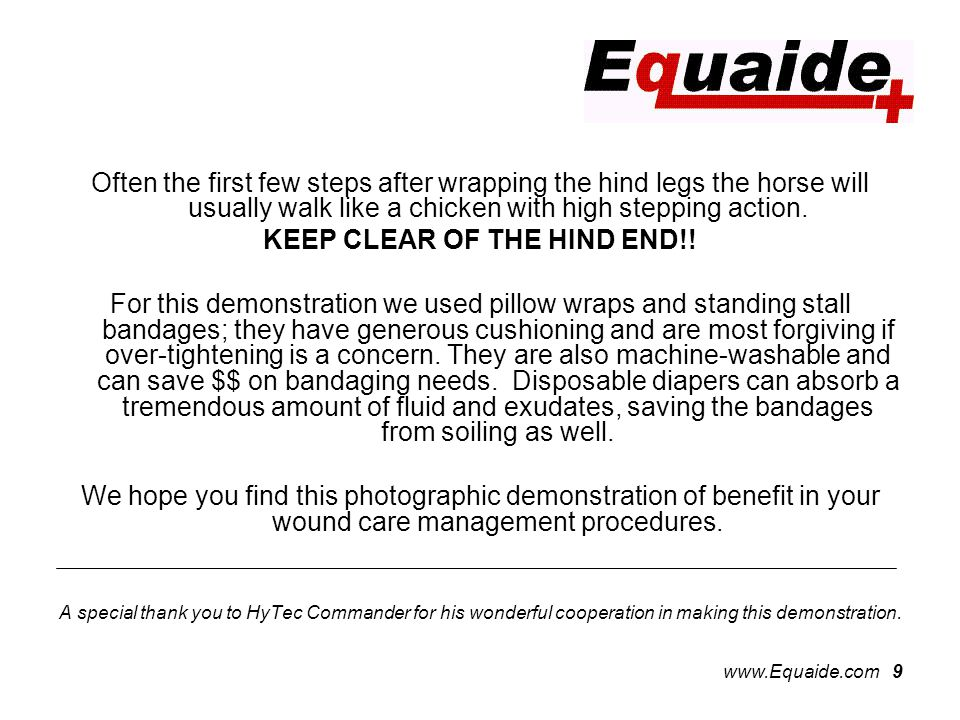 www.Equaide.com 9 Often the first few steps after wrapping the hind legs the horse will usually walk like a chicken with high stepping action.
