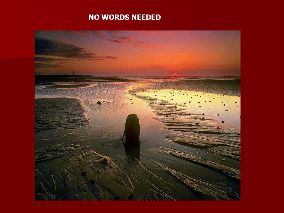 NO WORDS NEEDED
