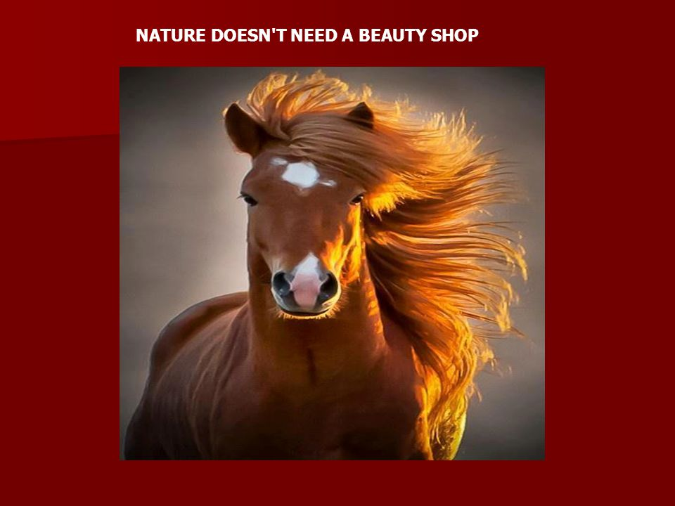 NATURE DOESN T NEED A BEAUTY SHOP