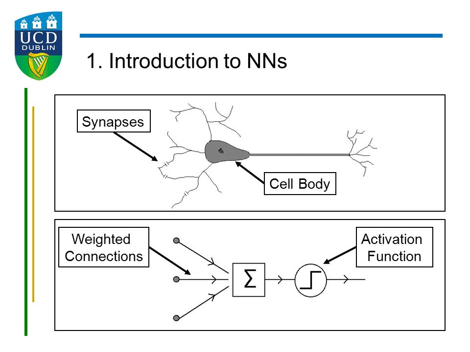 1. Introduction to NNs