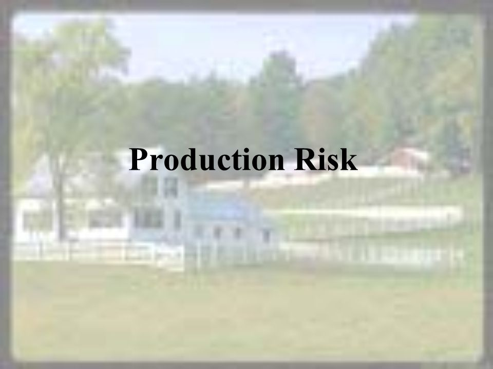 Production Risk