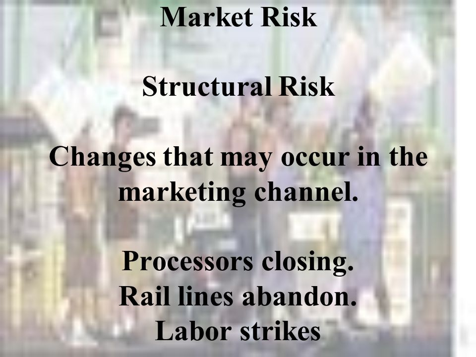 Market Risk Structural Risk Changes that may occur in the marketing channel.