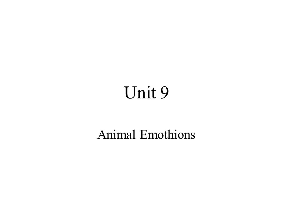 Unit 9 Animal Emothions