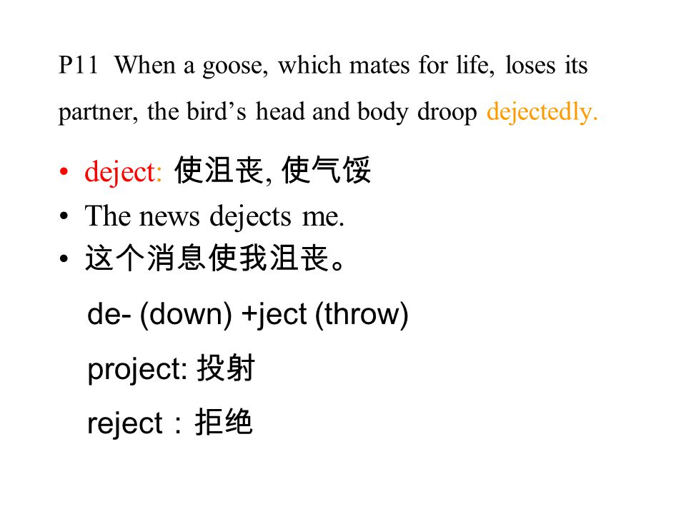 P11 When a goose, which mates for life, loses its partner, the bird's head and body droop dejectedly.