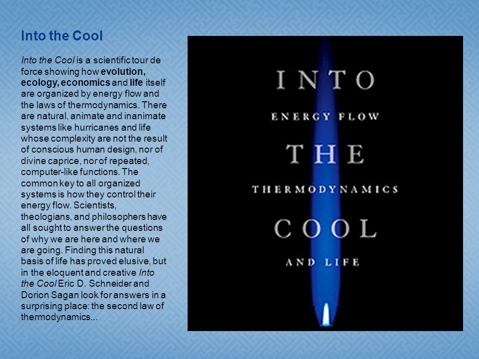4 4 4 4 4 4 4 Into the Cool Into the Cool is a scientific tour de force showing how evolution, ecology, economics and life itself are organized by energy flow and the laws of thermodynamics.